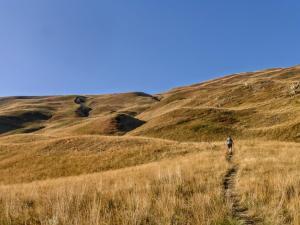 Szlak przez długi czas wiedzie bardzo łagodnie pod górę.