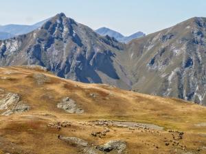 Zejście trwa dłużej niż wejście, bo na każdym kroku przystajemy i podziwiamy krajobrazy.