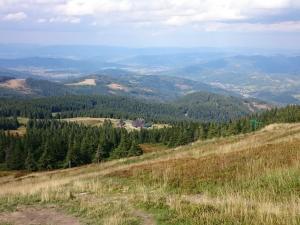 W drodze na szczyt Pilska
