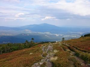 Góra Pięciu Kopców - Widok na Babią Górę