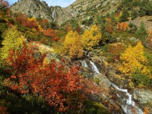 Wodospad Comapedrosa i mieniące się feerią barw drzewa