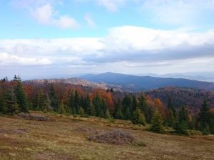 W drodze na przełęcz Knurowską