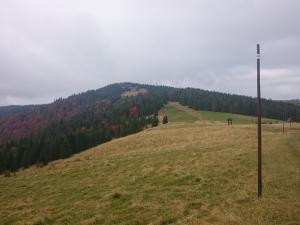 Hala Długa i Turbacz