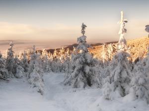 Widok z okolic Małego Śnieżnika