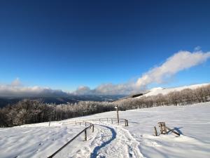 Połonina Wetlińska w zimie