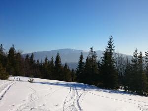 Babia Góra widziana ze szczytu Jałowca