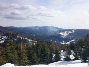 Widok z niebieskiego szlaku Złatna - Hala Lipowska