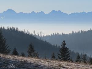 Tatry ze Starych Wierchów, styczeń 2016