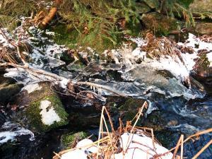 Przecznicki Potok zimą