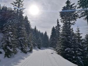 Kolejną lokalizacją skąd można wystartować to parking za Nową Morawą- ruszam w stronę Śnieznika