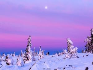 Ksieżycowe kolory