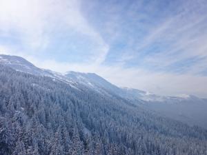 Babia Góra, widok z Sokolicy
