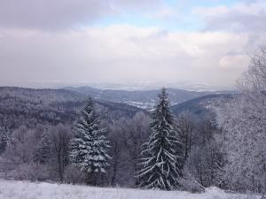 Widok z Leskowca