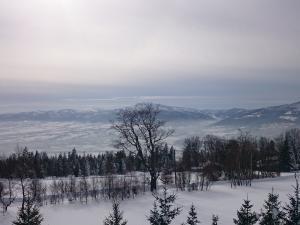Widok z platformy widokowej na Magurce Wilkowickiej