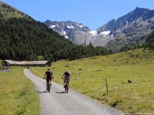 Świetną górską ścieżką rowerową długo zjeżdżam w tych pięknych okolicznościach przyrody.