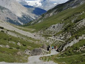 Przede mną zjazd z przełęczy Passo di Alpisella (2268 m) przez dolinę Valle Alpisella. W dali widać Ortler (3905 m).