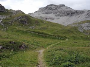 Dalej jadę tą ścieżką w kierunku przełęczy.