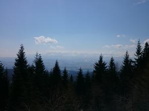 Okolice Wisielakówki, widok na Tatry