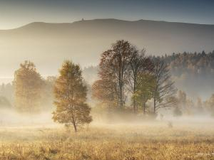 Jesień w Karkonoszach