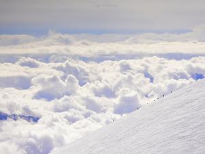 Alpiniści zdobywający wschodni wierzchołek Elbrusa.