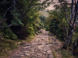 W drodze do Samotni