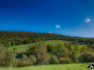 Łąki przy przełęczy Hyrcza