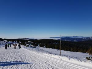 W drodze na szczyt Pradziada