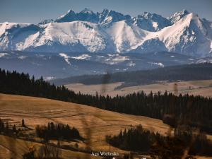 Tatry z Niedzicy