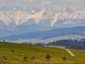 Tatry z okolic Przełęczy Snozka