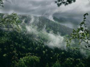 """""""Płoną góry, płoną lasy w przedwieczornej mgle ..."""""""
