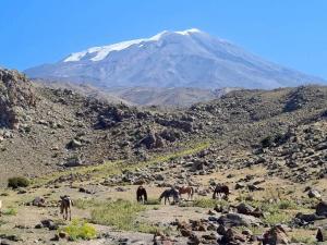 Widok na szczyt z wys. 2200m