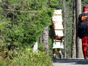 Nosicz w Tatrach Słowackich