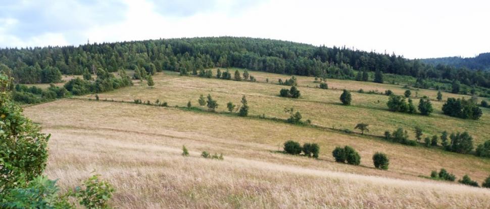Widok z Kufla w kierunku Blizbora