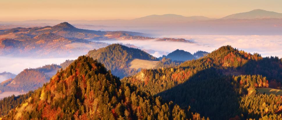 Pieniny w pigułce – strzeliste wzniesienia i mgły zalegające w dolinach. Wszystko to o poranku.