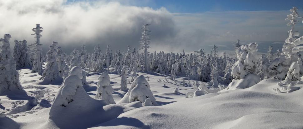 Biała zima pod Małym Śnieżnikiem