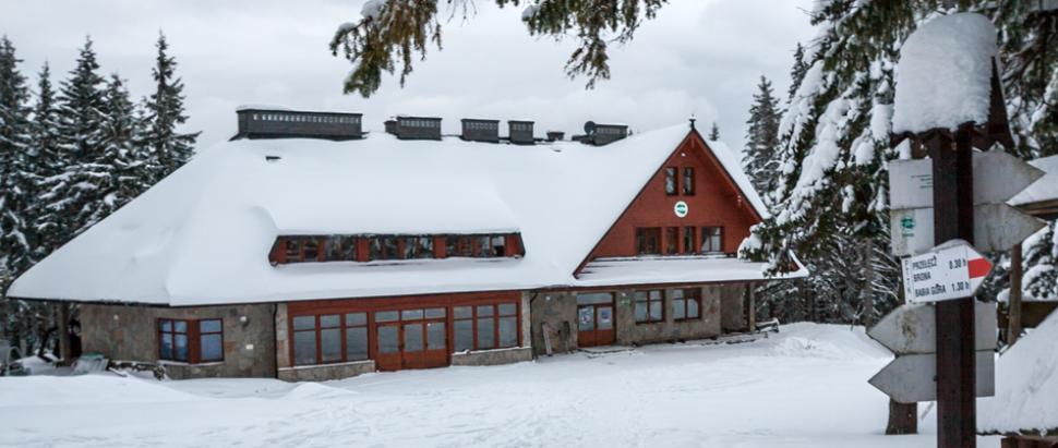 Markowe Szczawiny zimą
