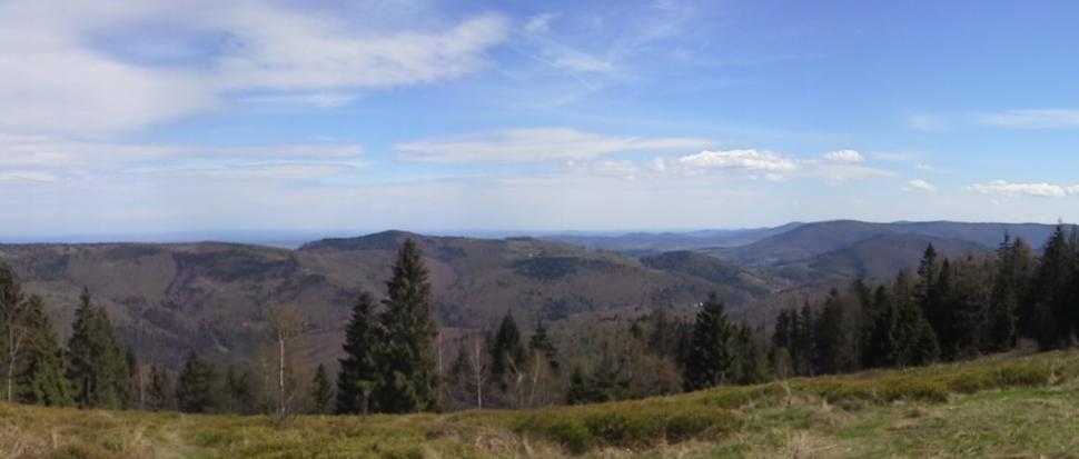 Beskid Mały, część wschodnia, przełęcz Targanicka
