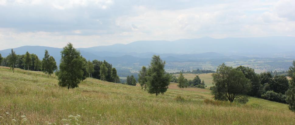 Szlak Przełęcz Komarnicka - Przełęcz Widok