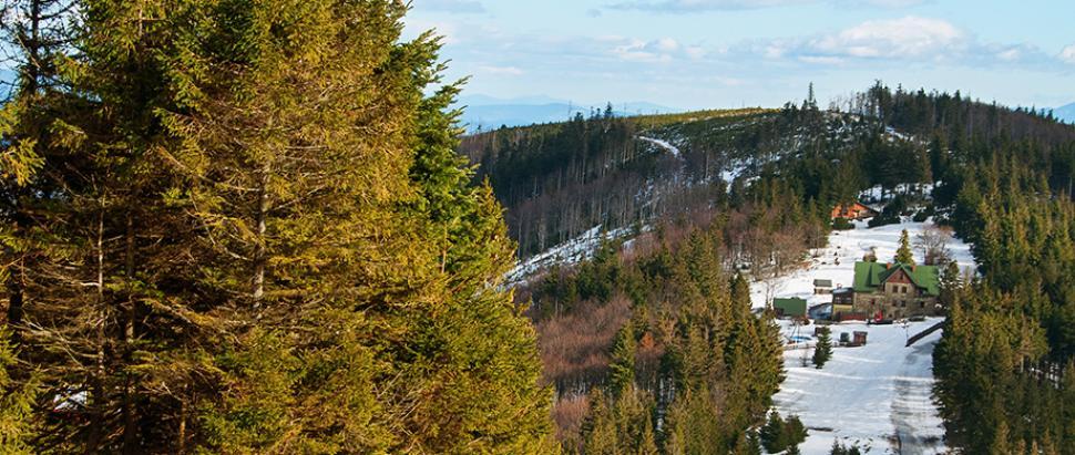 Widok z Klimczoka