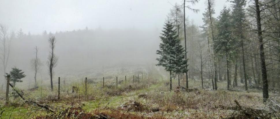 Korona Gór Polski: zimowa Lackowa