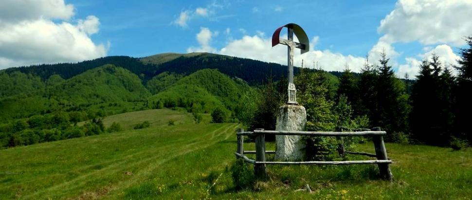 Widok z przełęczy Przysłop na Gorgany