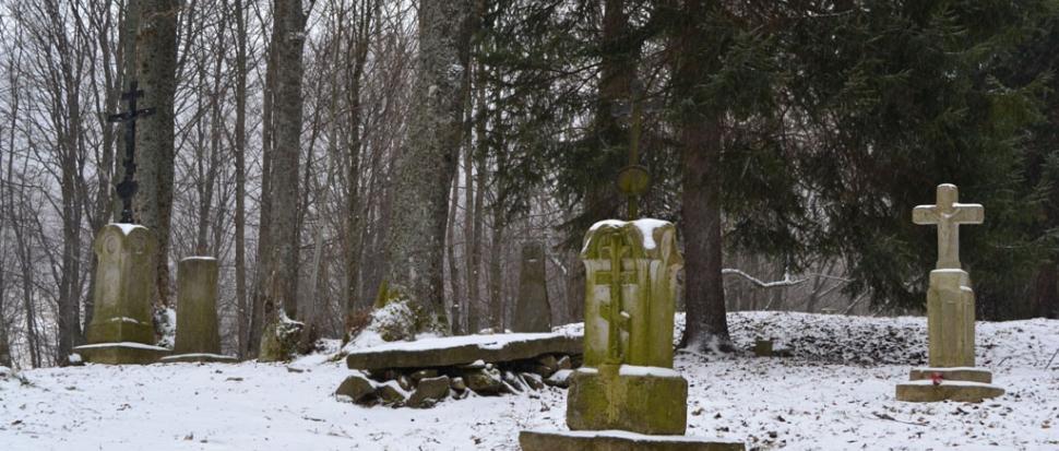 Zachowany we fragmentach cmentarz. Brzegi Górne