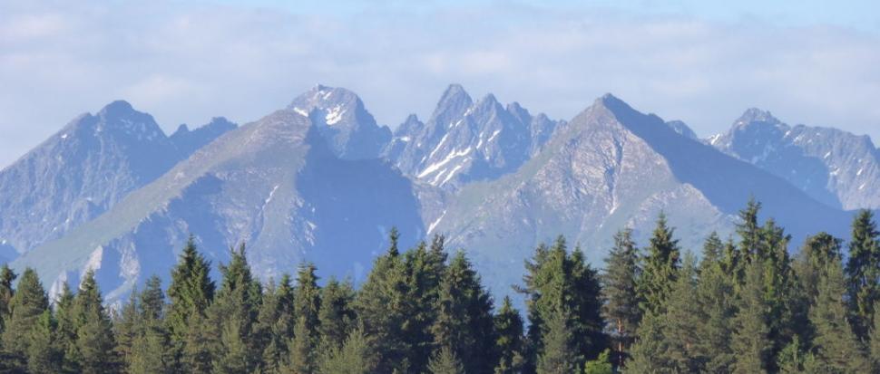 1. plan od lewej: Płaczliwa Skała, Hawrań, Nowy Wierch i za drzewami Murań. 2. plan: Kieżmarski, Łomnica, Durny, Baranie Rogi, Lodowy