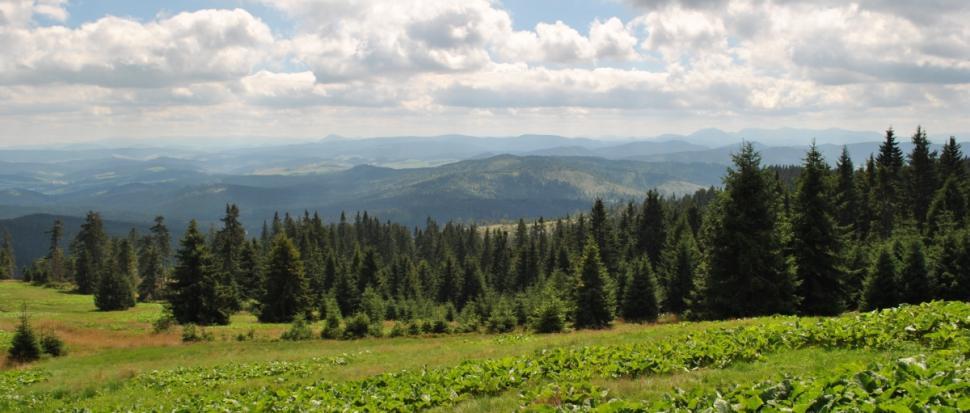 Góry Choczańskie i Mała Fatra.