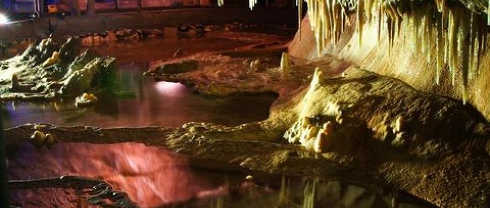 Jaskinia Niedźwiedzia